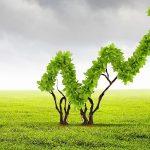 Зелената икономика: опасният път към превръщането на природата в стока